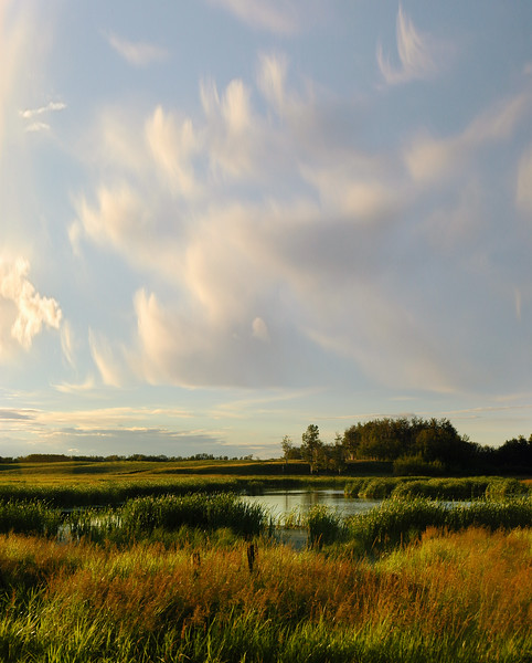 Destination scenic - prairies - Stock Photo by Nature Photographer Christina Craft