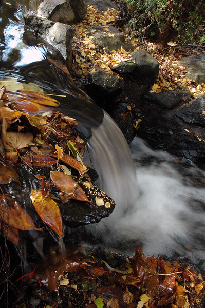 waterfalls and fall leaves - Nature Stock Photography - Professional Nature Photography by Nature and Wildlife Photographer Christina Craft