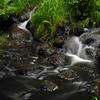 water flowing over rocks in a river or stream - Nature Stock Image by Professional Nature Photographer Christina Craft