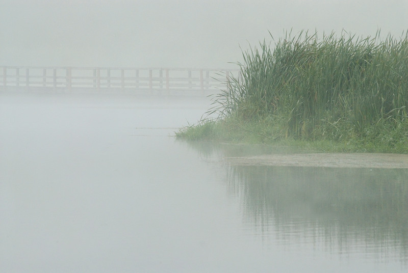 A bridge over a lake - fog and mist<br /> <br /> The Nature Stock Photography Library features rights managed and royalty free wildlife, nature, travel stock photography and licenses for stock photos. We also sell high quality fine art nature prints and photo products. All images are by professional wildlife and nature photographer Christina Craft.