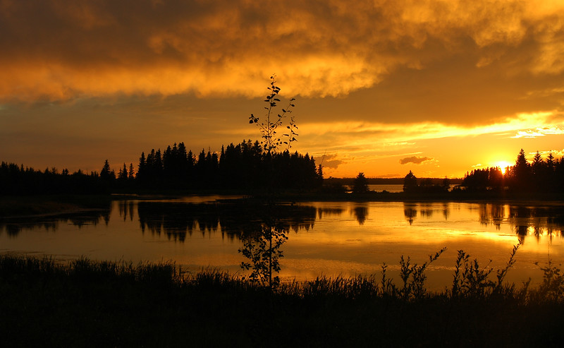 Silhouette at suset on a lake - Nature Stock Image by Professional Nature Photographer Christina Craft