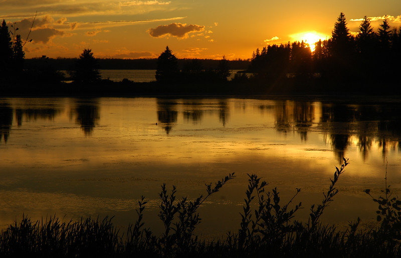 Lake at sunrise or sunset golden glow allowing silhouette in cottage country - Nature Stock Image by Professional Nature Photographer Christina Craft