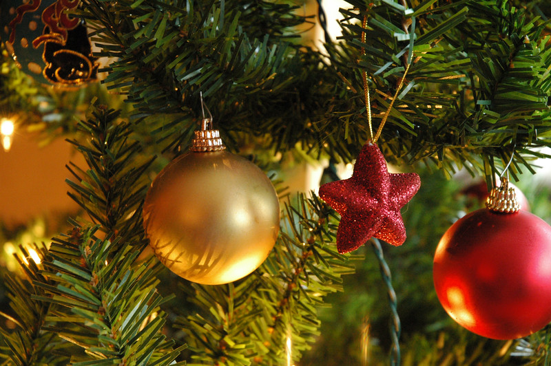Seasonal holiday decorations on a Christmas tree<br /> Professional Nature Photography by Christina Craft of the Nature Stock Photography Library