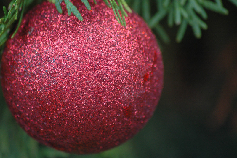 Christmas decorations<br /> Professional Nature Photography by Christina Craft of the Nature Stock Photography Library