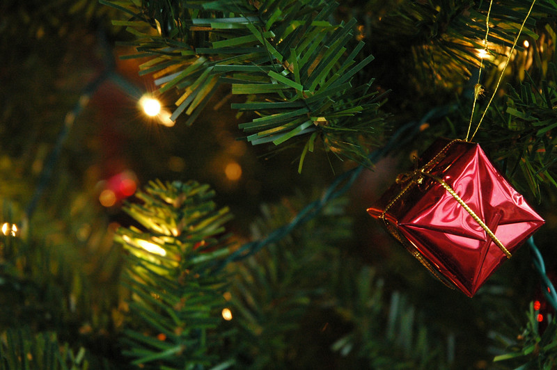 Seasonal holiday picture of an ornament on a christmas tree<br /> Professional Nature Photography by Christina Craft of the Nature Stock Photography Library