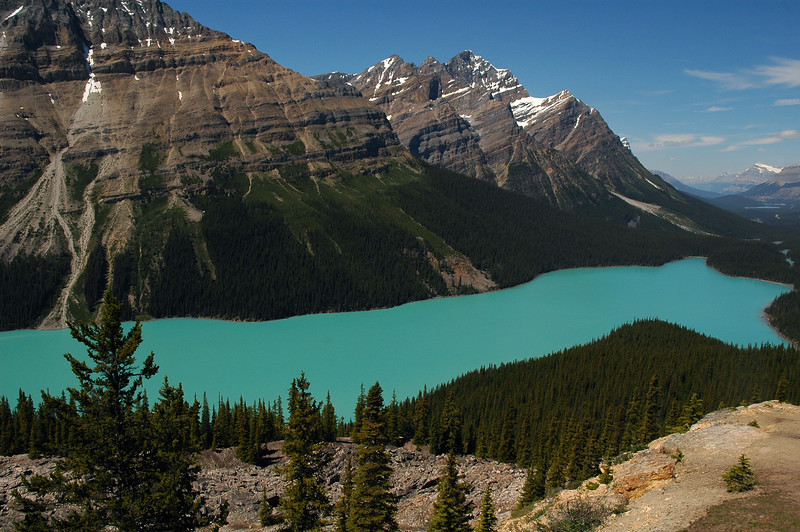 Peyto Lake on a Sunny cloudless day - Rocky Mountain landscape mountains scenic landscape - Photograph by professional nature stock photographer Christina Craft