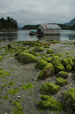 Low Tide - Stock Photo by Nature Photographer Christina Craft