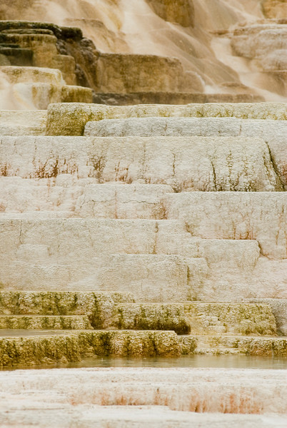 Nature Photography - Mammoth Hotsprings Terraces in Yellowstone National Park - The main attraction at Mammoth Hot Springs is the terraces. Heat, water, limestone, and rock fracture combine to create the terraces. Travertine is deposited as white rock, however the microorganisms and living bacteria create beautiful shades of oranges, pinks, yellows, greens, and browns. The Mammoth Hot springs are constantly changing. As formations grow, water is forced to flow in different directions. The constant changes in water and mineral deposits create a living sculpture. Mammoth Hot Springs is divided into two sections, the lower terraces, and the Upper terrace Loop.