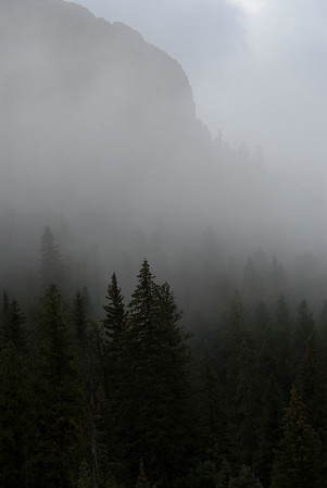 Fog rolls in - forest and mountain scenery