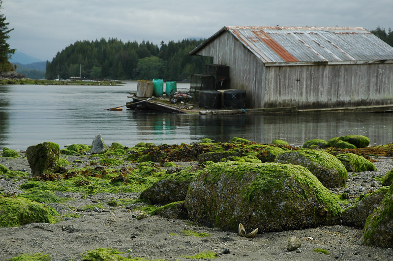 Fishing town - small fishing village along the ocean Stock Photo by Nature Photographer Christina Craft