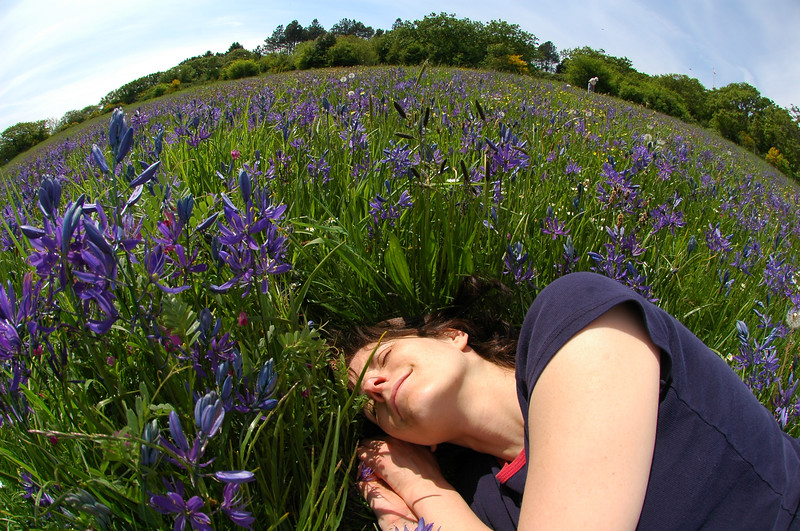 woman sleeping in a meadow in spring, fantasy photography - Nature Stock Image by Professional Nature Photographer Christina Craft