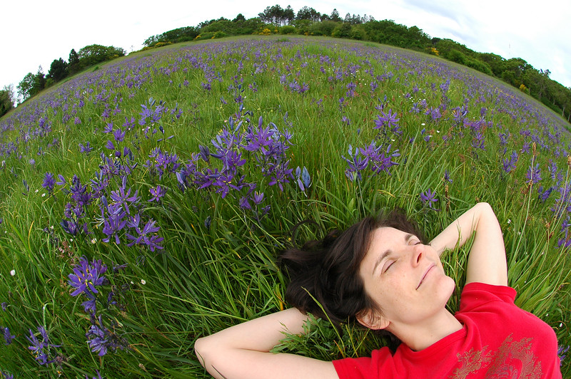 Dreaming in a meadow - a girl - taken with a fisheye - Nature Stock Image by Professional Nature Photographer Christina Craft