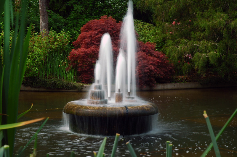 Butchart Gardens Victoria British Columbia on Vancouver Island in Canada - Nature Stock Image by Professional Nature Photographer Christina Craft