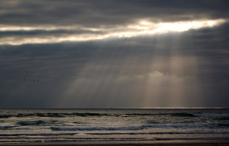 Birds flying by with god rays / sun rays streaming down onto a beach as the tide hits from the ocean - Nature Stock Image by Professional Nature Photographer Christina Craft