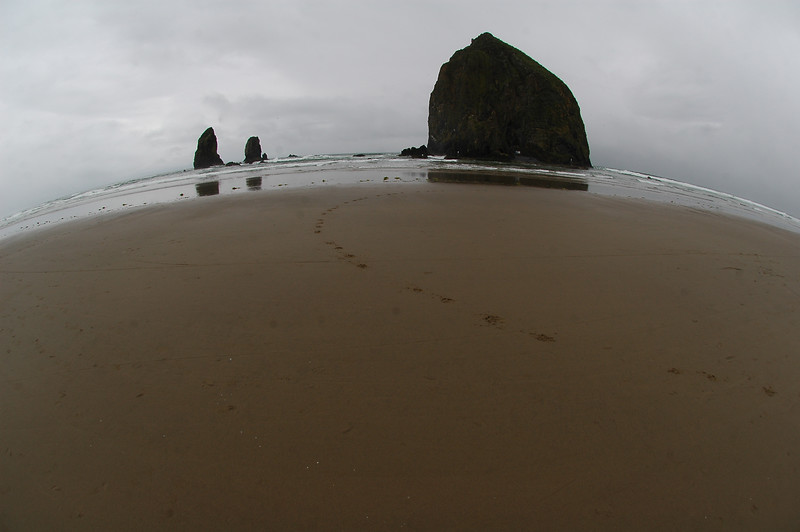 Canon Beach Oregon USA taken with a fisheye  - Nature Stock Image by Professional Nature Photographer Christina Craft