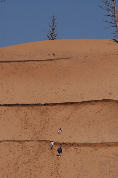 Kids sliding down a sand hill in Kiwanda Oregon - Nature Stock Image by Professional Nature Photographer Christina Craft