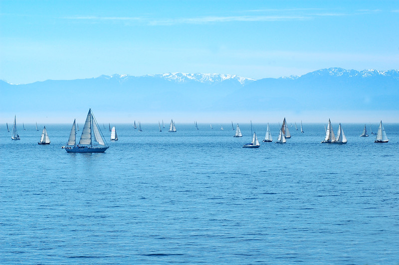 Sail Boat race - Stock Photo by Nature Photographer Christina Craft