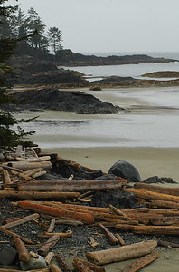 Westcoast landscape destination scenic - Stock Photo by Nature Photographer Christina Craft
