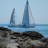 yachts - sail boats - Stock Photo by Nature Photographer Christina Craft