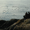 Two people enjoying a view of the ocean - sitting on rocks - Nature Stock Image by Professional Nature and Wildlife Photographer Christina Craft