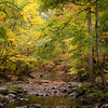 Lubber Run - Fall 2015