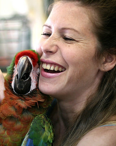 Lovers. Lori and one of her Macaws.
