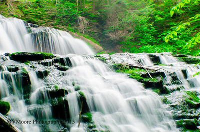 Ricketts Glen-3498