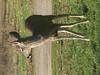Huasna-Deer-A1-21