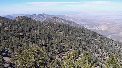 in the direction of Mt. Islip, Throop Peak, Burnham Peak from near the summit of Baden-Powell