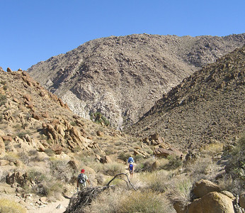 Hikers on the hot trail, 49 Palms Oasis Trail