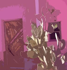 encelia adobe, 29 Palms Inn