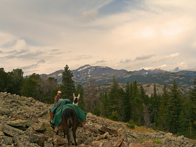 Scott Woodruff (owner/guide Lander Llamas) with Wind River Peak in background