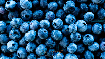 © Paul Conrad/Pablo Conrad Photography - Blueberries lit by the open sky at a farmers market in Skagit County.© Paul Conrad/Paul Conrad Photography - Rights limited to laptop/desktop computer usage only. No printing allowed.