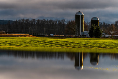 Silos Reflection Whatcom County -  0106