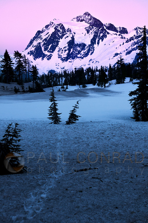 Mt. Shuksan and Frozen Picture Lake - Alpenglow on Mt. Shuksan in the Mount Baker/Snoqualmie Wilderness in northwest Washington east of Bellingham. (© Paul Conrad/Paul Conrad Photography