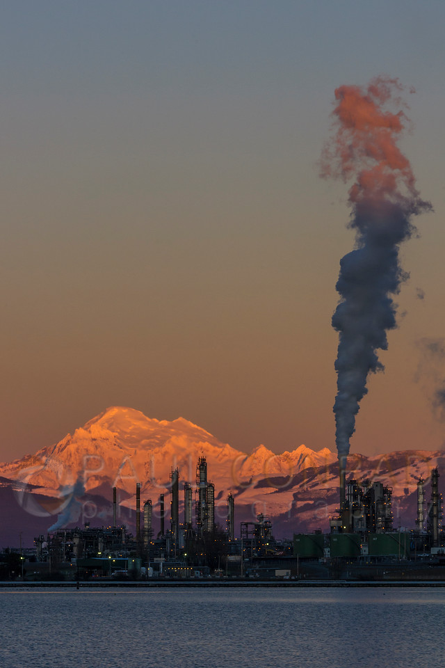 The Tesoro refinery in Anacortes, Wash., against as sunset washed Mount Baker on Wednesday evening Jan. 11, 2017. (© Paul Conrad/Paul Conrad Photography)