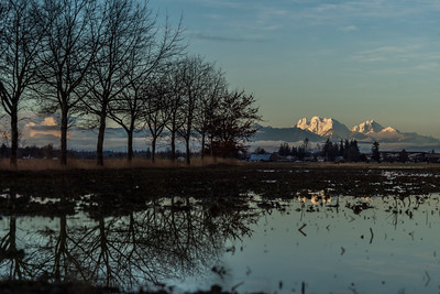 Whatcom County Scenes -  0200