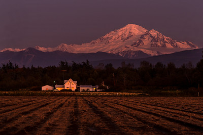 Mount Baker and Farm House