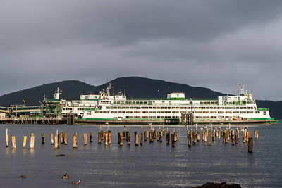 Elwah at the Anacortes Terminal -  0753