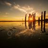 170522-HikingChuckanut-SunsetLocustBeach-PEC-00109