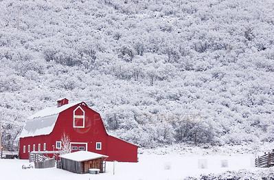 Red, White & Brrrrrrrrrrr.....