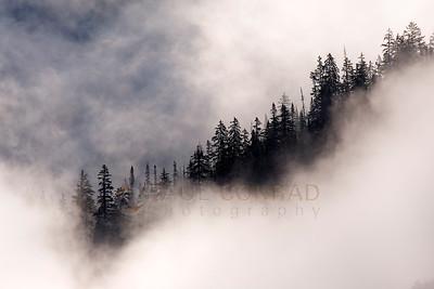 Enshrouded Ridge