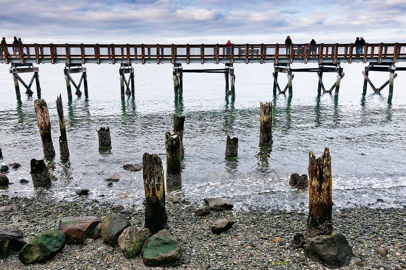 © Paul Conrad/Pablo Conrad Photography<br /> <br /> On the Boardwalk at Boulevard Park in Bellingham, Wash., on Sunday December 30, 2012.