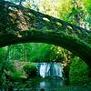 © Paul Conrad/Pablo Conrad Photography<br /> <br /> Whatcom Falls in Whatcom Falls Park in Bellingham, Wash.