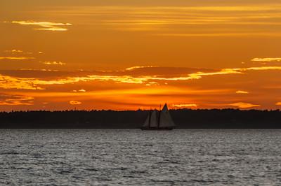 Sailboat  in Bellingham Bay at Sunset