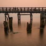 Smoky Boardwalk in Bellingham