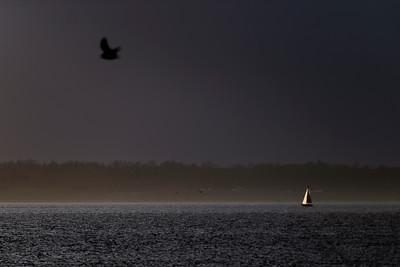 Sunset over Bellingham Bay and the Boardwalk - 0397