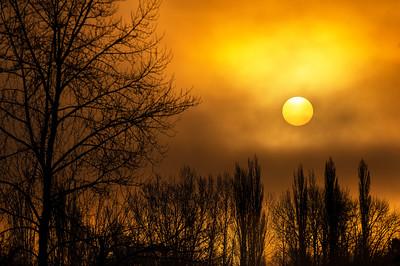 Morning Fog on Lake Whatcom   c -  0030