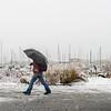 Walking in Snow at Squalicum Harbor in Bellingham, WA
