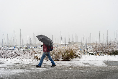 Walking in Snow at Squalicum Harbor in Bellingham, WA